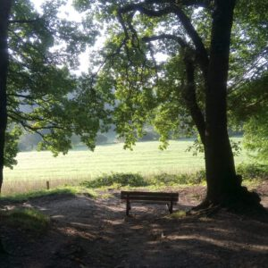 slow living weekend mindfulness nijmegen
