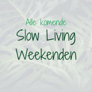 slow living weekend mindfulness nijmegen stilte retraite meditatie